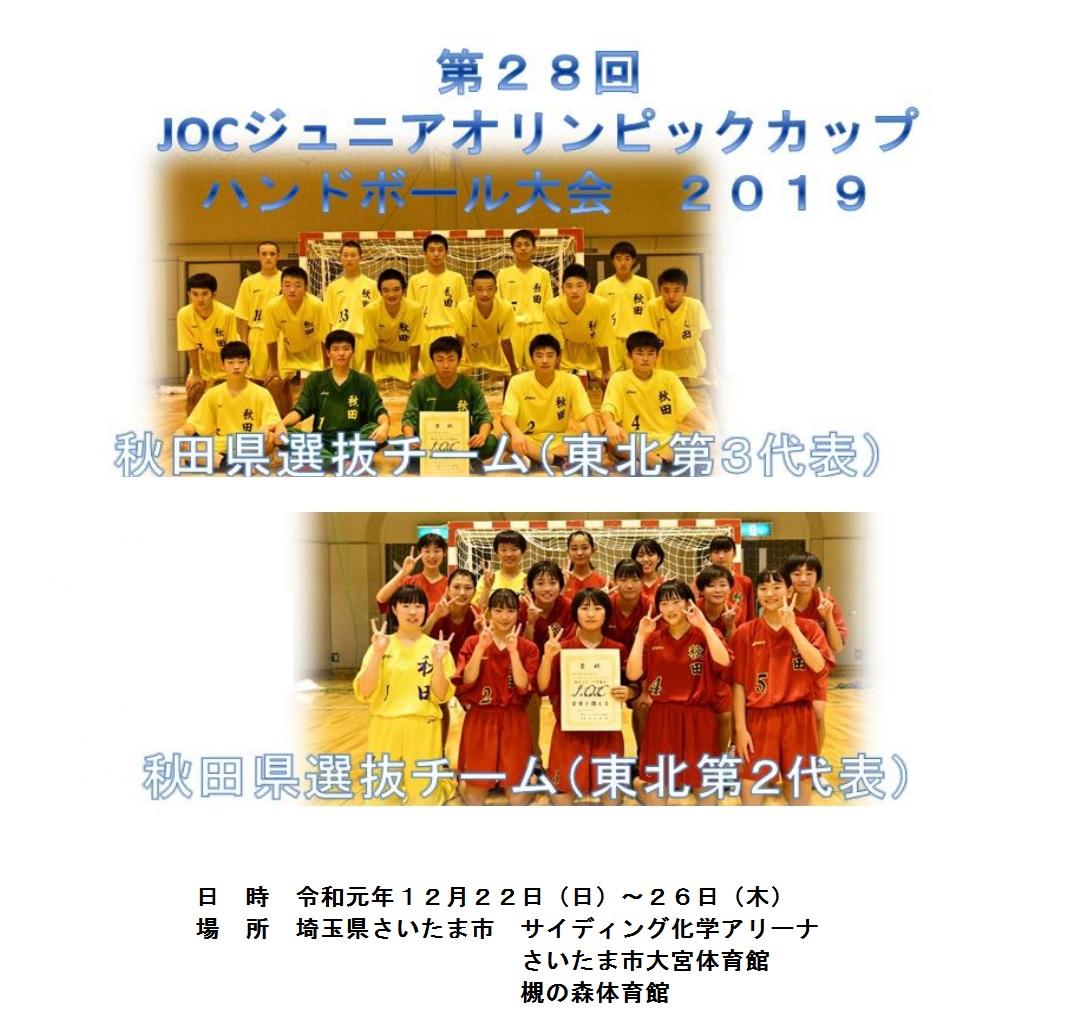 協会 埼玉 県 ハンドボール 藤商ハンドボール/FUJISHO HTP